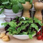 Salade mix Contrasts