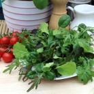 Salade mix Spectrum
