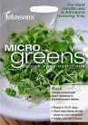 Micro Greens Basilicum