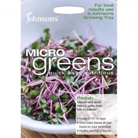 Micro Greens Radijs