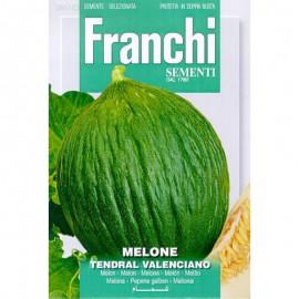 Meloen Tendral Valenciano
