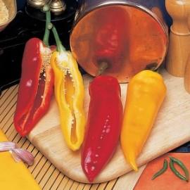 Paprika Corno di torro