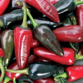 Peper Hungarian Black