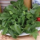 Salade mix Oriental