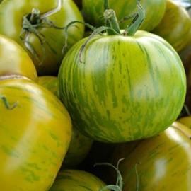 Tomaten Rond Green Zebra
