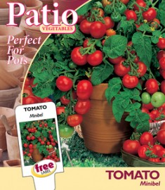 Tomaten Pot Minibel