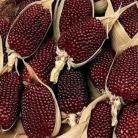 Siermais Strawberry Corn