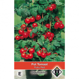 Tomaten balkontomaten Pottomaat Ruby Red