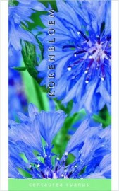 Centaurea  Korenbloem     per 100