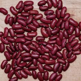 Stambonen Chili bonen